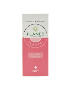 Plan T.S.