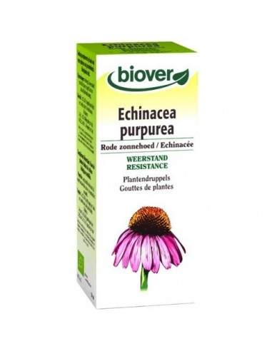 ECHINACEA PURPUREA (echinacea) TM 50ml.